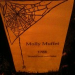 Molly Muffet