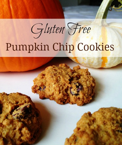 pumpkin chip cookie